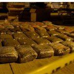 Tronditet Evropa/Shqiptarët, të besuarit e karteleve  të kokainës në Amerikën Latine